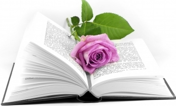 small rose open book