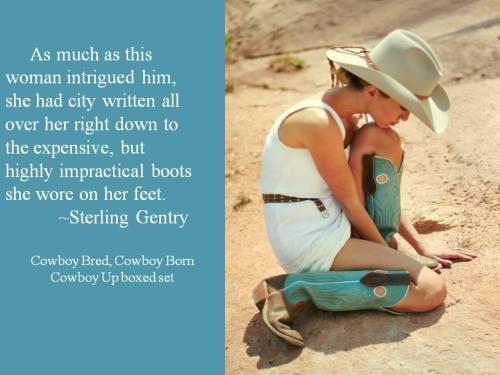 D'Ann Lindun, Cowboy Bred Cowboy Born, Cowboy Up, Boxed Set, Anthology, Contemporary Western Romance, Cowboy Romance, Western